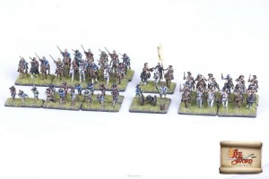 KINGDOM OF SWEDEN SKIRMISH SET