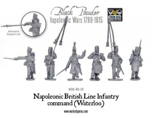 BRITISH LINE INFANTRY COMMAND (WATERLOO)