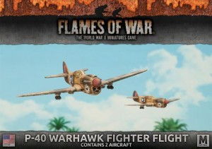P40 WARHAWK FIGHTER FLIGHT (2X)