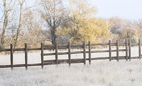 283001 Log Fence Set 120180118225657.jpg